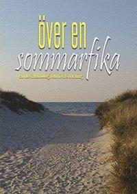 bokomslag Över en sommarfika : en novellantologi om livets mening