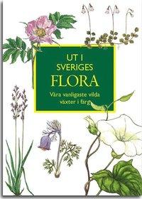 bokomslag Ut i Sveriges Flora: våra vanligaste vilda växter i färg