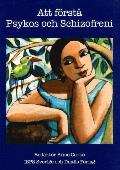 bokomslag Att förstå psykos och schizofreni