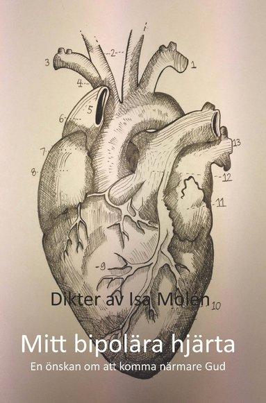 bokomslag Mitt bipolära hjärta