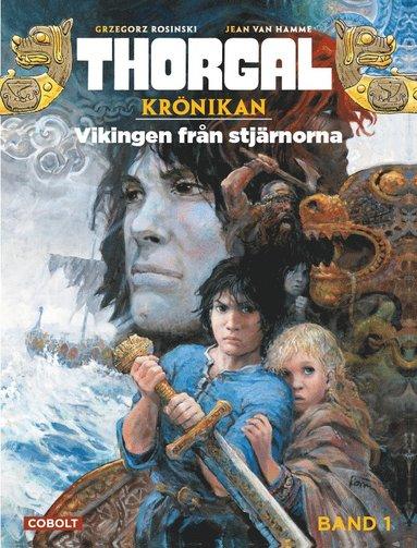 bokomslag Vikingen från stjärnorna
