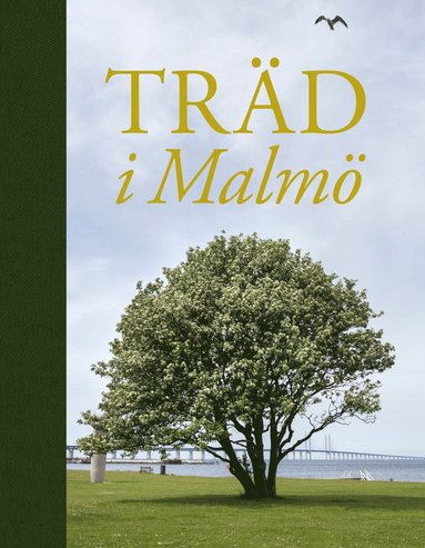 bokomslag Träd i Malmö