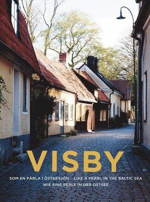 bokomslag Visby : en pärla i Östersjön / Like a pearl in the Baltic sea / Wie eine perle in der ostsee