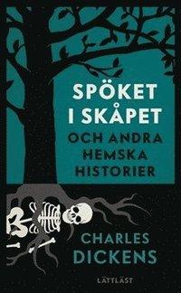 bokomslag Spöket i skåpet - och andra hemska historier (lättläst)