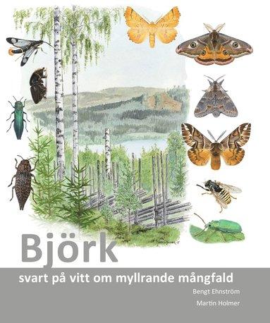 bokomslag Björk : svart på vitt om myllrande mångfald