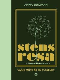 bokomslag Stens resa : varje möte är en pusselbit