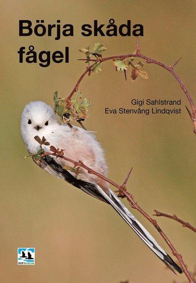 bokomslag Börja skåda fågel, 2:a utökade uppl