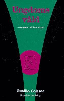 bokomslag Ungdomsvåld : om yttre och inre utspel