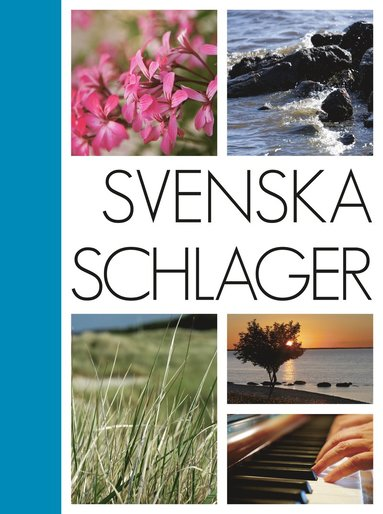 bokomslag Svenska schlager