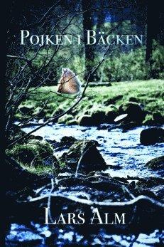 bokomslag Pojken i bäcken