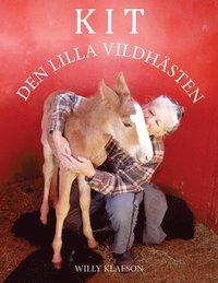 bokomslag Kit - den lilla vildhästen