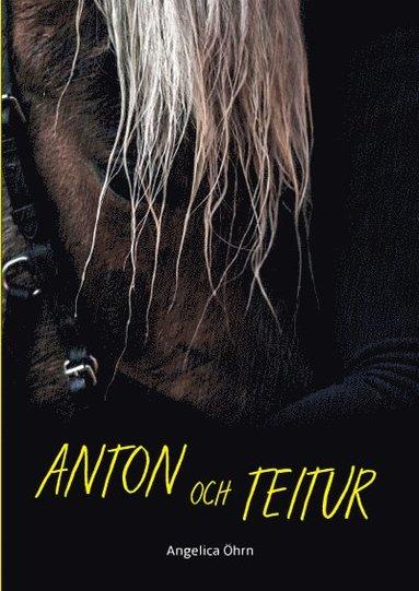 bokomslag Anton och Teitur