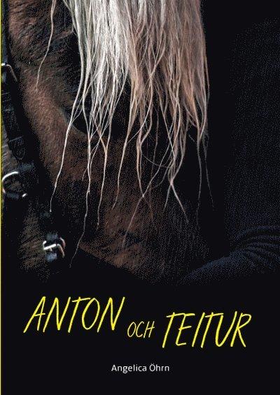 Anton och Teitur 1