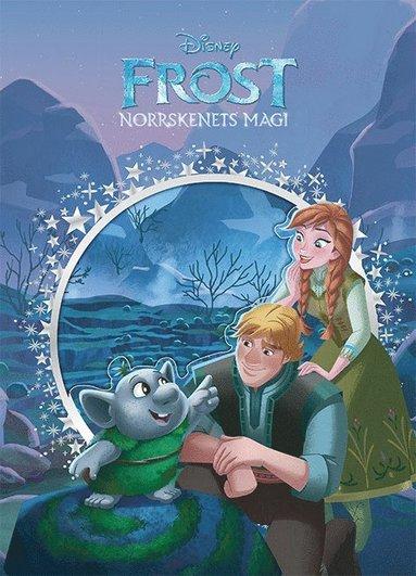 bokomslag Frost. Norrskenets magi