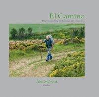 bokomslag El Camino : pilgrimsvandring till Santiago de Compostela