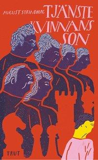 bokomslag Tjänstekvinnans son