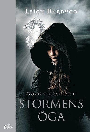 bokomslag Stormens öga