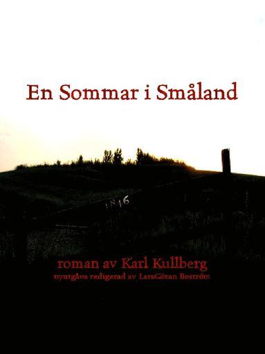 bokomslag En sommar i Småland