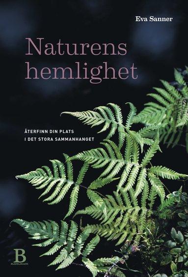 bokomslag Naturens hemlighet : Återfinn din plats i det stora sammanhanget