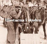 bokomslag Hästarna i staden
