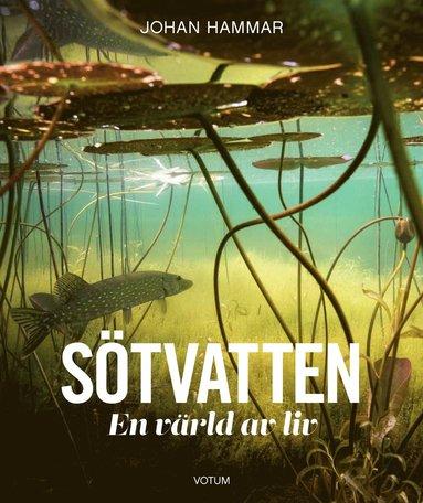 bokomslag Sötvatten : en värld av liv