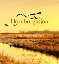bokomslag Hornborgasjön : Lockelsens landskap