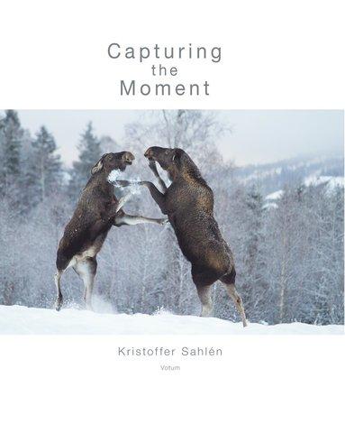 bokomslag Capturing the Moment