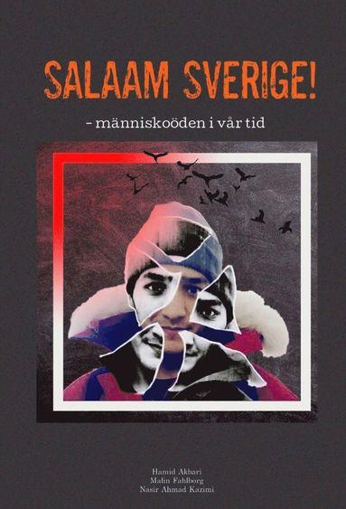 bokomslag Salaam Sverige! : människoöden i vår tid