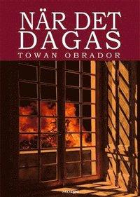bokomslag När det dagas : historisk roman från Gotlands 1600-tal ca 1603 - 1610