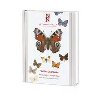 bokomslag Fjärilar: Dagfjärilar: Hesperiidae-Nymphalidae klotband