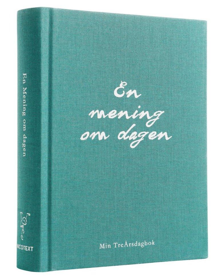 En mening om dagen - Min treårsdagbok 1