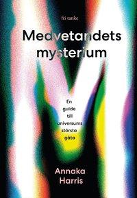 bokomslag Medvetandets mysterium : en guide till universums största gåta