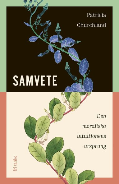 bokomslag Samvete : Den moraliska intuitionens ursprung