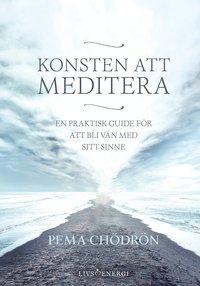 bokomslag Konsten att meditera : En praktisk guide för att bli vän med sitt sinne