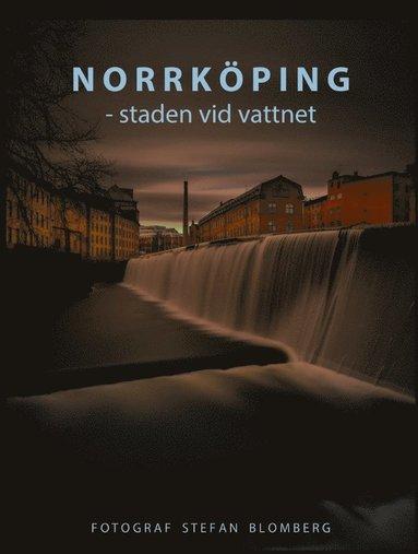 bokomslag Norrköping : staden vid vattnet