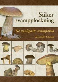 bokomslag Säker svampplockning : de vanligaste svamparna