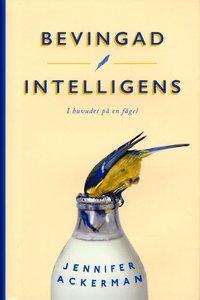 bokomslag Bevingad intelligens : i huvudet på en fågel
