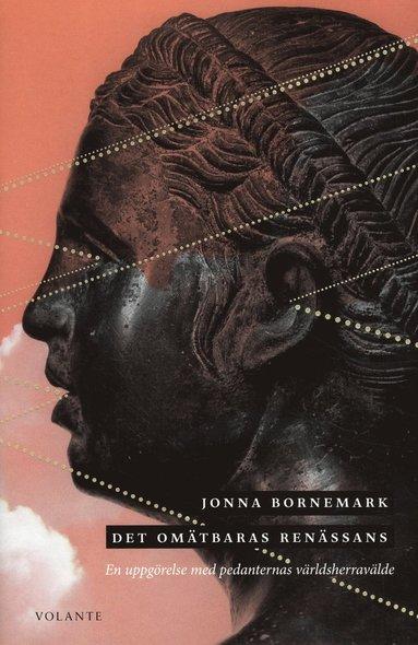 bokomslag Det omätbaras renässans : En uppgörelse med pedanternas världsherravälde