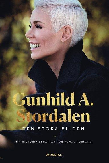 bokomslag Den stora bilden : Gunhild A. Stordalen