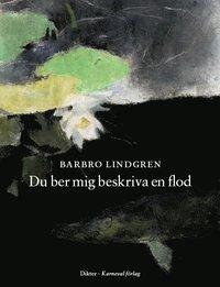 bokomslag Du ber mig beskriva en flod