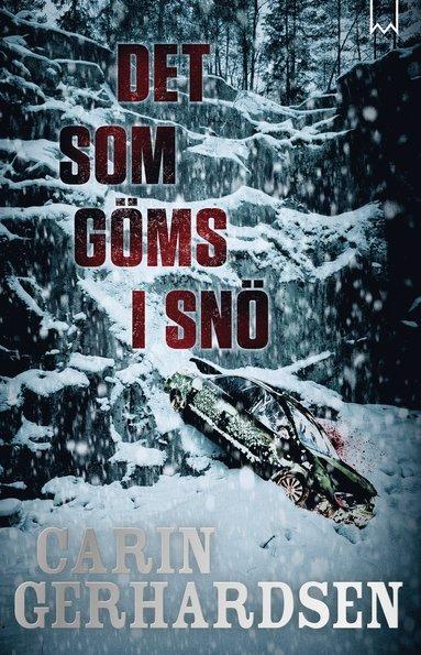 bokomslag Det som göms i snö