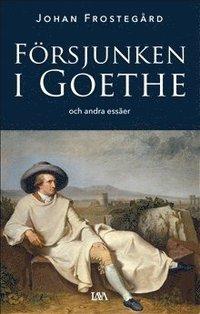 bokomslag Försjunken i Goethe och andra essäer