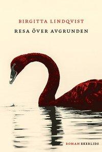 bokomslag Resa över avgrunden