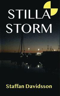 bokomslag Stilla Storm