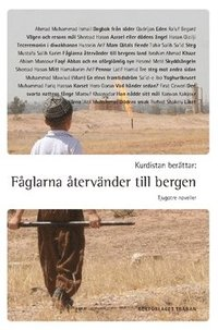 bokomslag Kurdistan berättar: Fåglarna återvänder till bergen : tjugotre noveller