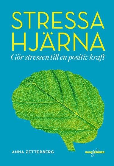 bokomslag Stressa hjärna - Gör stressen till en positiv kraft