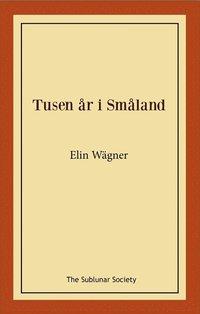 bokomslag Tusen år i Småland