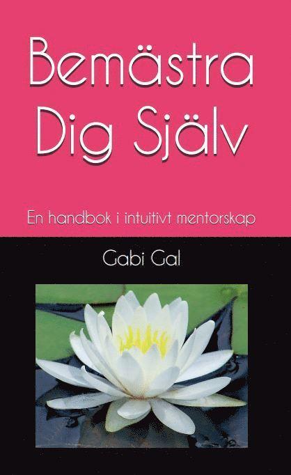 Bemästra dig själv : en handbok i intuitivt mentorskap 1