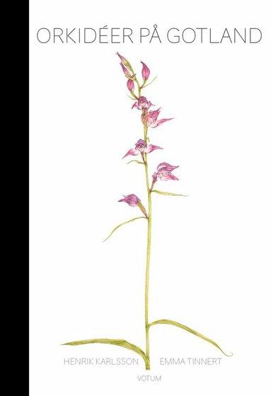 bokomslag Orkidéer på Gotland