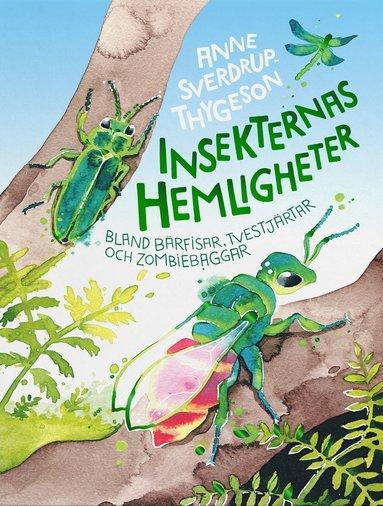 bokomslag Insekternas hemligheter : bland bärfisar, tvestjärtar och zombiebaggar